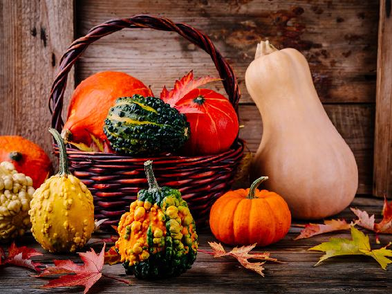 Jesień dynie